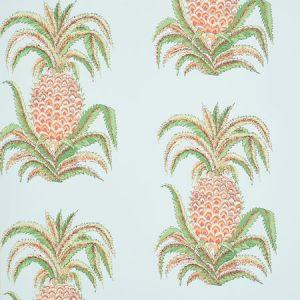 5010450 PINEAPPLES Sky Schumacher Wallpaper