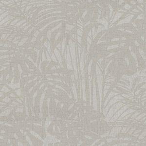 5281 96W7971 JF Fabrics Wallpaper