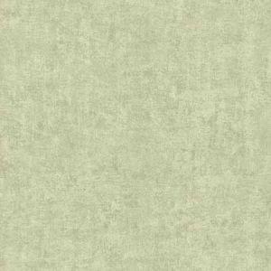 670-58421 Pierre Distressed Texture Light Green Brewster Wallpaper