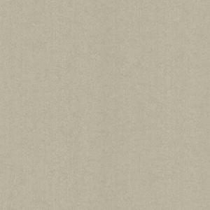 670-66565 Newton Distressed Stria Texture Silver Brewster Wallpaper