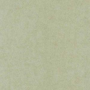 670-66574 Vella Air Knife Texture Light Green Brewster Wallpaper