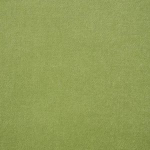 70575 ROCKY PERFORMANCE VELVET Aloe Schumacher Fabric