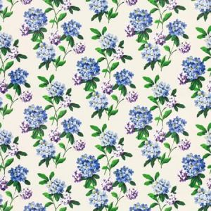 CASHIERS Stout Fabric
