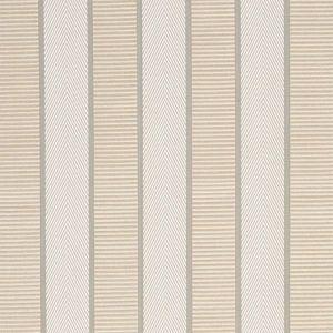 77101 RIBBON STRIPE Champagne Schumacher Fabric