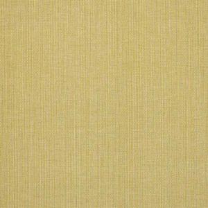 78874 ISPA HAND WOVEN PLAIN Verde Schumacher Fabric