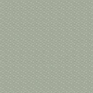 04275 Sky Trend Fabric