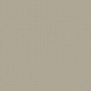 04329 Sand Trend Fabric
