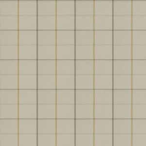 04341 Champagne Trend Fabric
