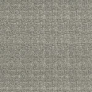04360 Silver Trend Fabric