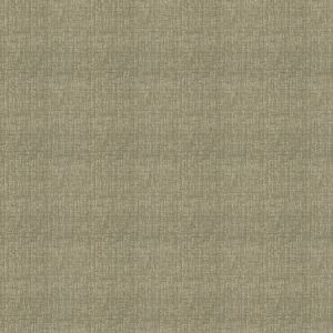 04360 Sand Trend Fabric