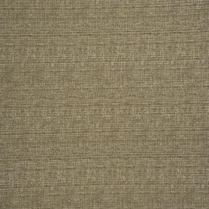 04361 Parchment Trend Fabric