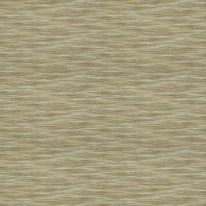 04366 Sandstone Trend Fabric