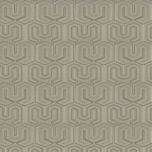04303 Sandstone Trend Fabric