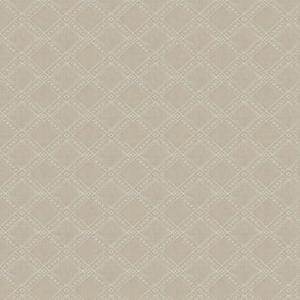 04444 Sand Trend Fabric