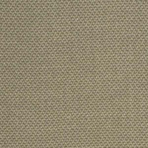 ZACCAI Stone S. Harris Fabric