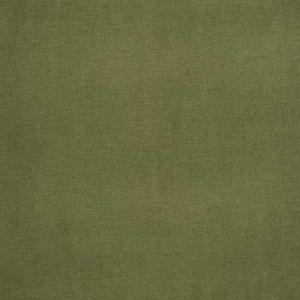 04465 Turtle Trend Fabric