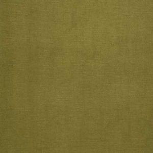 04465 Palm Trend Fabric