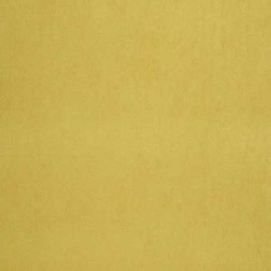 04465 Gold Trend Fabric