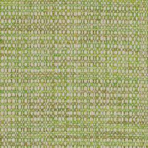 SIMPATICO Keylime Fabricut Fabric