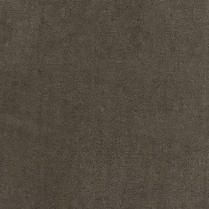 A9 0004 2800 RESISTANCE EASY CLEAN FR Taupe Scalamandre Fabric