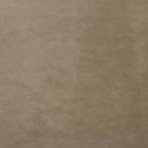 A9 0004 9300 PROJECT WATER REPELLENT Taupe Scalamandre Fabric