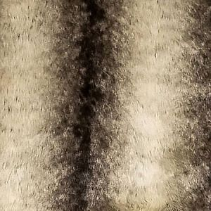 A9 0004 FURR FURRY Faux Silver Fox Scalamandre Fabric