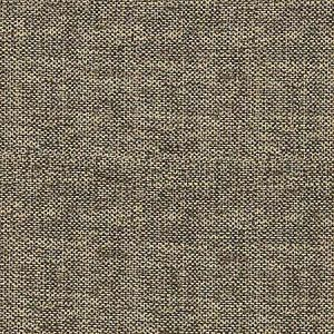 A9 0010 MELO MELODY Golden Gray Scalamandre Fabric