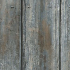 AMW10014-15 TIMBER Driftwood Kravet Wallpaper