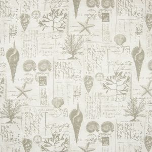 B6898 Pewter Greenhouse Fabric