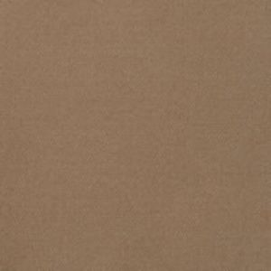 B8807 Pecan Greenhouse Fabric