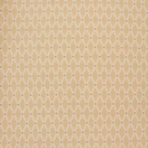 B8852 Latte Greenhouse Fabric