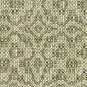 B8 0003 PIEN PIENZA Walnut Scalamandre Fabric