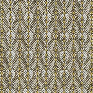 B8 0018 PARO PARANOA Gold Birch Scalamandre Fabric