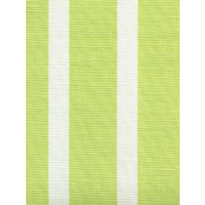 6166-02 BEACH COMBER Limon on White Quadrille Fabric