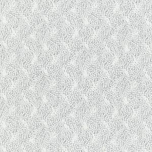 BI 0002 1234 FLURRY Snow Scalamandre Fabric