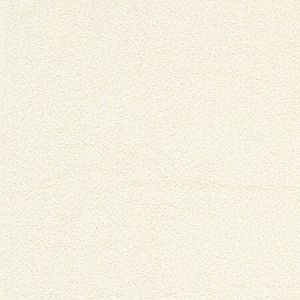 BZ 0001 A501 MOUTON White Scalamandre Fabric