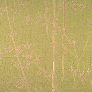 CL 000826731 BAMBOO Jade Scalamandre Fabric
