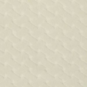 CL 0001 36433 ARGO CANESTRINO Latte Scalamandre Fabric