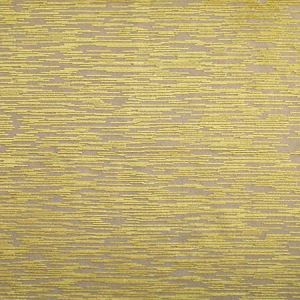 CL 0002 36437 EDO COORDINATO Oro Scalamandre Fabric