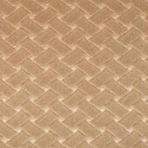 CL 0004 36433 ARGO CANESTRINO Castoro Scalamandre Fabric