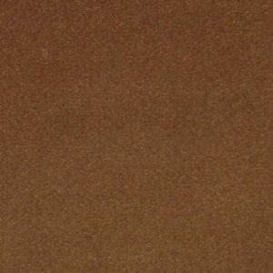 CL 0006 36432 ARGO Cammello Scalamandre Fabric