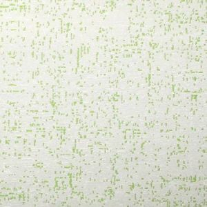 CL 0007 36431 VICTORIA COORDINATO Verde Scalamandre Fabric