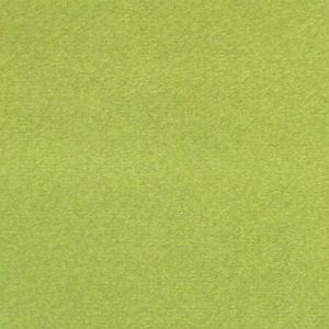 CL 0024 36432 ARGO Muschio Scalamandre Fabric