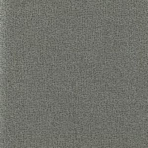 COD0532N Sweet Birch York Wallpaper