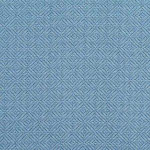D371 Wedgewood Charlotte Fabric