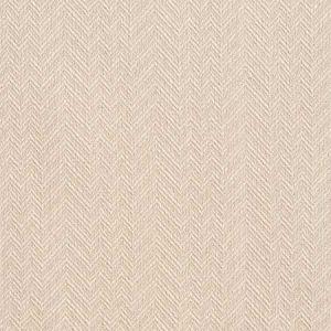 D384 Oatmeal Charlotte Fabric