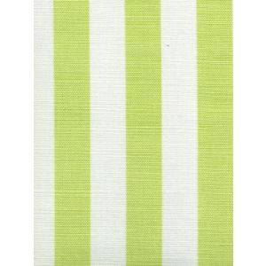 6167-02 DUNE Limon on White Quadrille Fabric