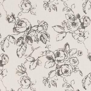 F0428/01 DELPHINE Charcoal Clarke & Clarke Fabric