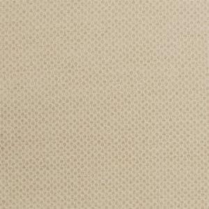F0434/19 STELLA Sand Clarke & Clarke Fabric