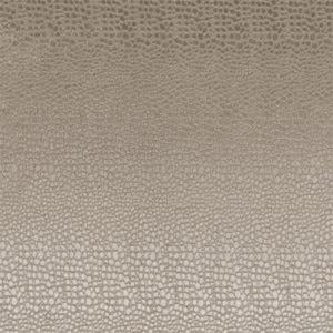 F0469/02 PULSE Ash Clarke & Clarke Fabric